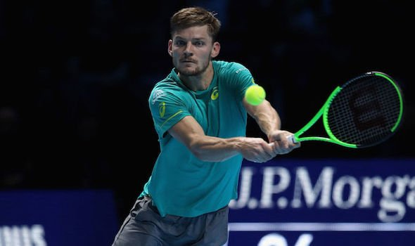 Photo of Goffin